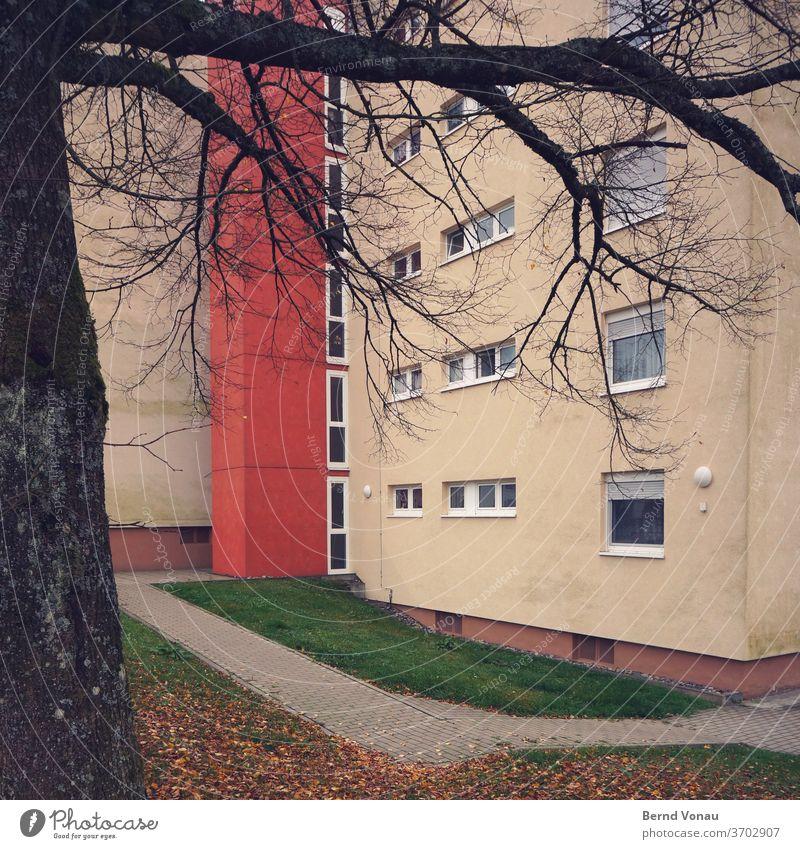 Zone Siedlung wohnen Haus mehrstöckig Mehrfamilienhaus Eintönig Wege & Pfade Stadt Plattenbau Fenster Pflastersteine Baum rot gelb Ast Zweig trist Herbst