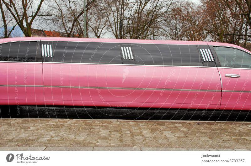 rosa Stretch-Limo PKW Stretch Limousine Dekadenz Reichtum Bürgersteig kahle Bäume lang us car Design Karosserie Statussymbol verlängert Komfort Detail