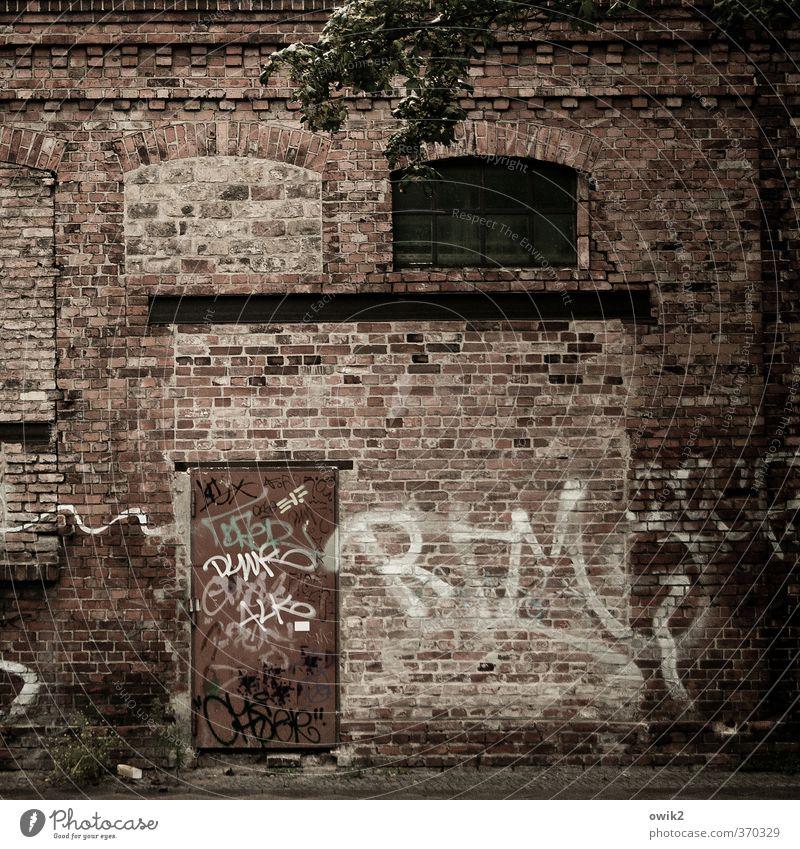 Berlin Wedding Blatt Haus dunkel Fenster Wand Graffiti Mauer Fassade wild Tür verrückt geschlossen Jugendkultur Buchstaben Spuren