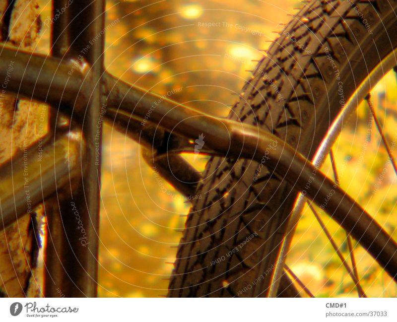 cruisin wheel Stil Fahrrad Freizeit & Hobby Rahmen old-school