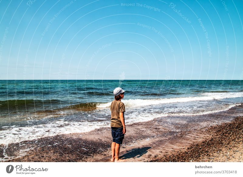 wo bleibt der sommer? weite Sehnsucht Fernweh träumen blau Himmel Ostsee Landschaft Natur Wasser Wellen Strand Meer Darß Küste Farbfoto Ostseeküste Tourismus