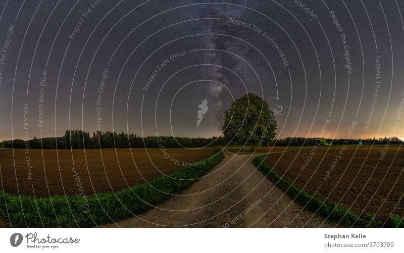 Die Milchstraße über einem einsamen Baum mit viel Platz zum Kopieren. Textfreiraum Natur Feld rein niemand keine Person Stern Galaxie Schönheit Weg Straße
