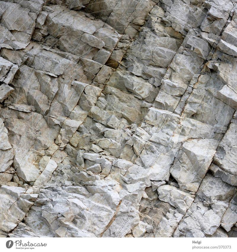 AST6 Inntal | Urgestein... Umwelt Natur Felsen Alpen alt authentisch außergewöhnlich eckig einfach einzigartig natürlich braun grau ruhig standhaft gefährlich