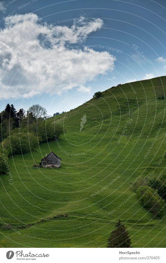 Schwyzer Hügli mit Hüsli Himmel Natur Ferien & Urlaub & Reisen grün schön Sommer Baum Landschaft Wolken Haus Wiese Gras Gebäude natürlich Schönes Wetter Alpen