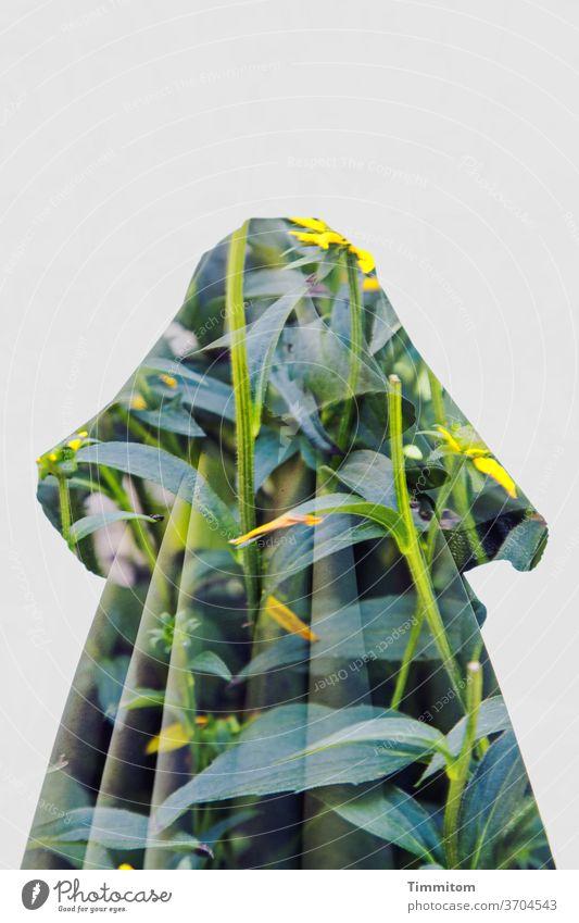 Ein Sonnenschirm im schmückenden Blumendekor Garten Falten Blüten Blätter Pflanze grün Doppelbelichtung Natur Nahaufnahme