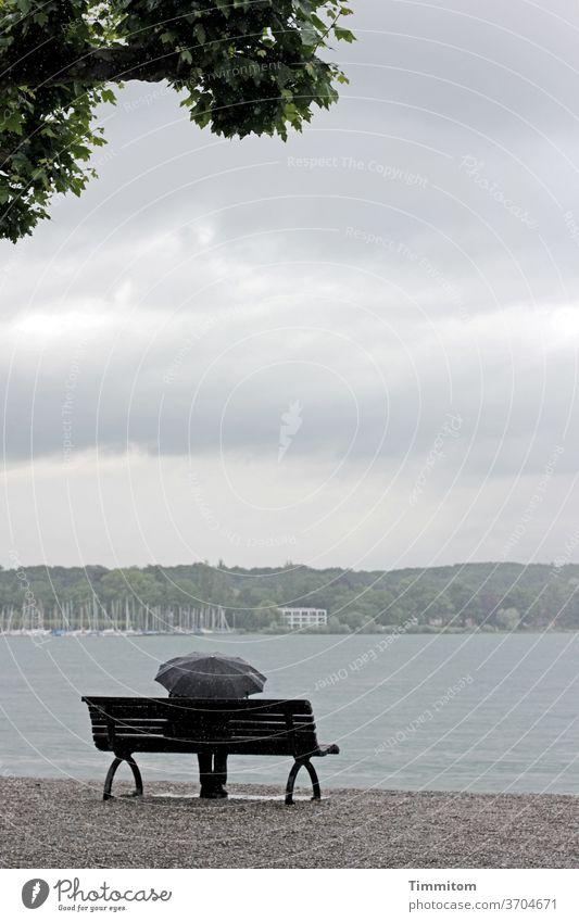 Vorfreude | Der Regenschauer wird enden Bodensee Ufer Kies Sitzgelegenheit Regenschirm Mensch Schutz Wolken Himmel Baum