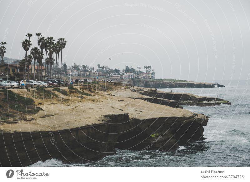 La Jolla Kalifornien Küste USA Farbfoto Natur Ferien & Urlaub & Reisen Sommer blau Tag amerika Amerika Landschaft Palmen Bucht Felsen Meer Wasser Himmel Pazifik