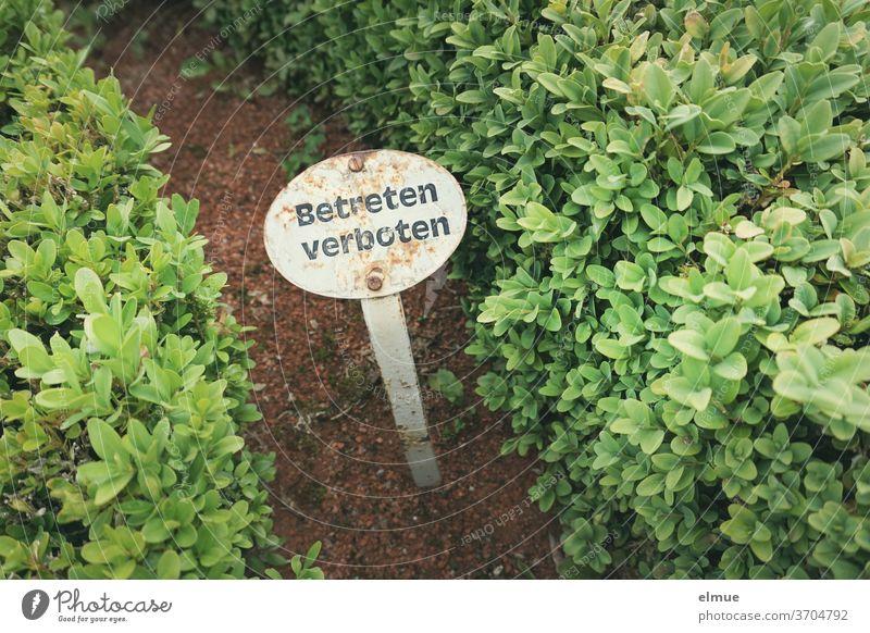 """Ein """"Betreten verboten"""" - Schild zwischen zwei kleinen Hecken appelliert an die Parkbesucher, sich gesittet auf den Wegen fortzubewegen betreten verboten"""