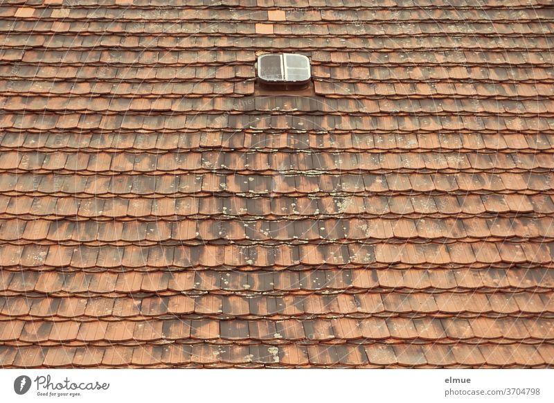 Das kleine Dachfenster kam sich schon seit langer Zeit ganz verloren und nutzlos vor zwischen den vielen roten und mittlerweile auch verwitterten Biberschwanzziegeln