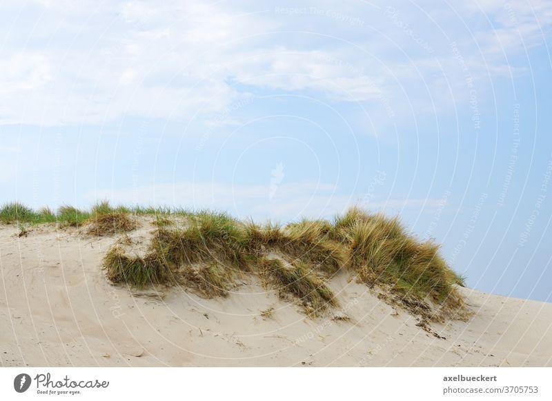 Sanddüne mit Dünengras sanddüne Strand Urlaub Deutschland Natur Landschaft Gras Hintergrund Hügel Küste Meer Himmel Sommer reisen niemand Tag Nordsee Ostsee