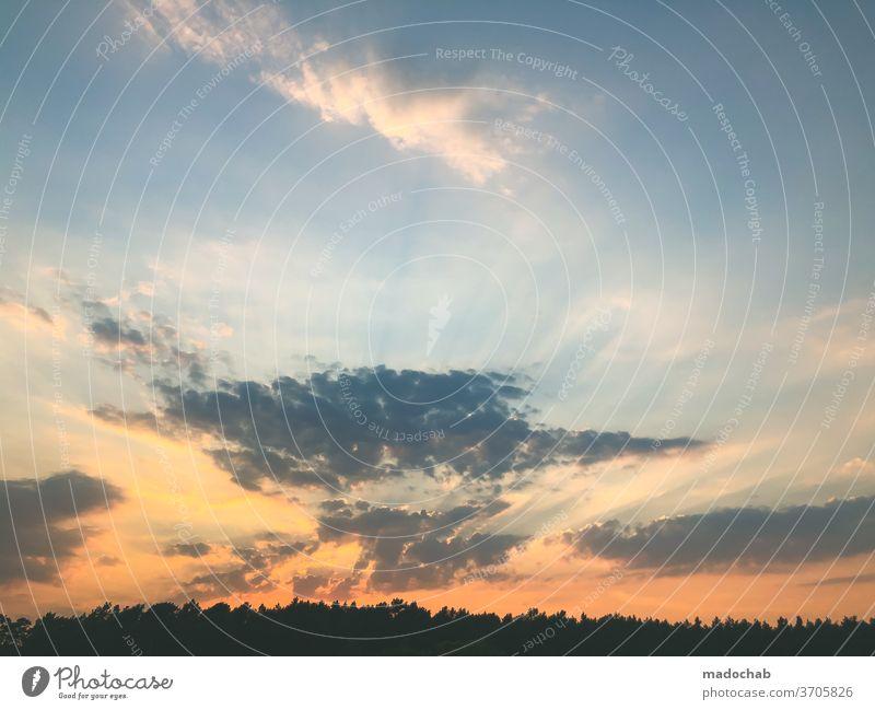 Sonnenuntergang Himmel Wolken Abenddämmerung Landschaft Dämmerung Natur Horizont orange schön Sonnenlicht Licht Sommer Außenaufnahme gelb rot dramatisch gold