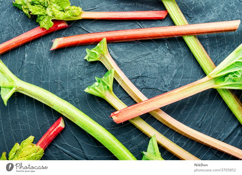 Frischer roter Rhabarber Gemüse Vorbau roh Pflanze frisch Lebensmittel Gesundheit Rhabarberstengel kleben Essbare Pflanze organisch grün natürlich sauer