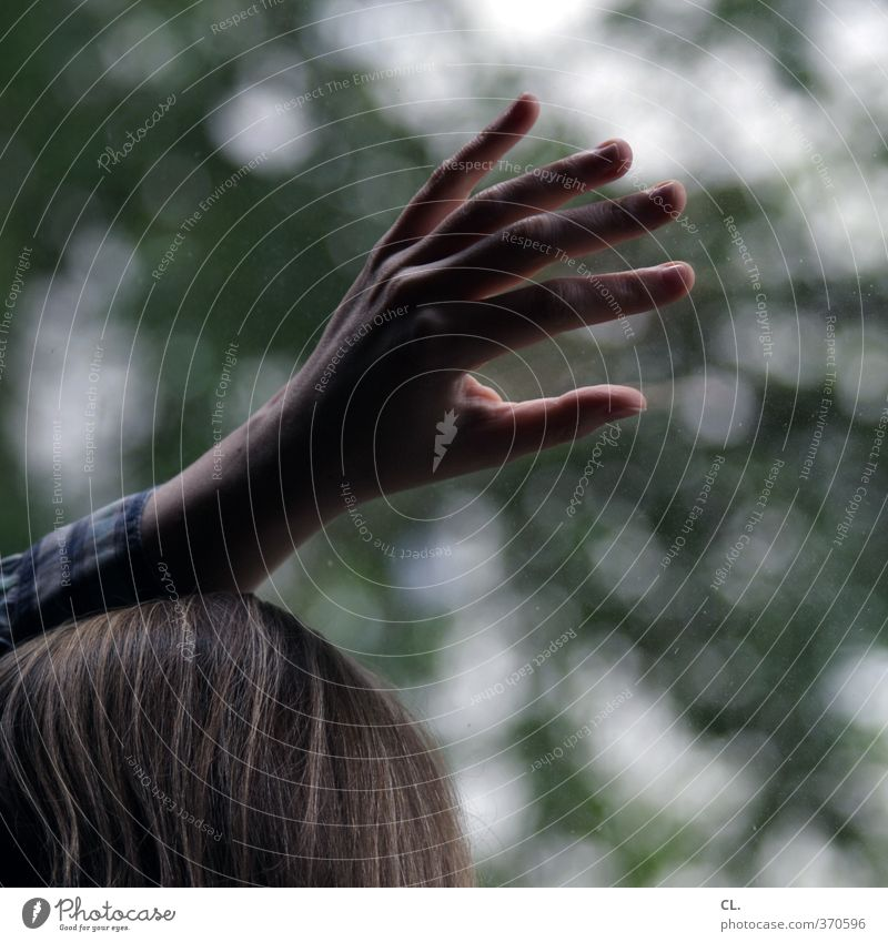 am fenster Mensch Frau Jugendliche Hand Einsamkeit Junge Frau Erwachsene dunkel Fenster 18-30 Jahre feminin Gefühle Traurigkeit Denken träumen Finger