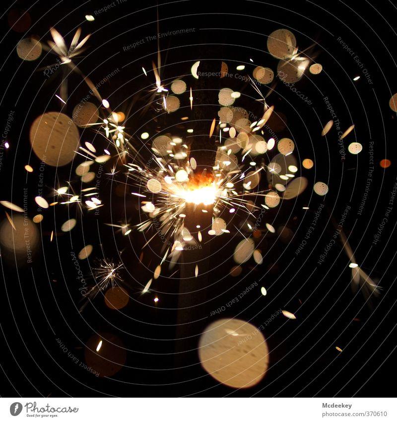 Funkenalarm (5) Wunderkerze Metall Feste & Feiern fliegen glänzend leuchten fantastisch heiß braun gelb gold grau orange rot schwarz weiß sprühen Kreis