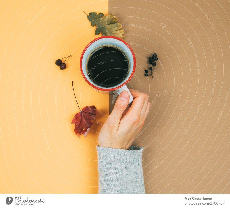 Die Hand einer Frau mit einer Tasse Kaffee und getrockneten Blättern. trocknen Herbst heiß Trockene Blätter warmer Hintergrund Cremefarbe Nägel Finger Pullover