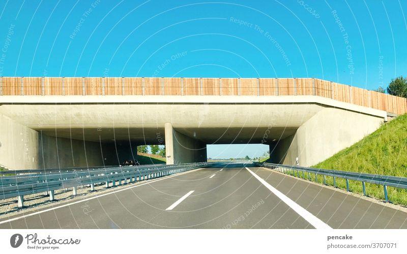 freifahrt Straße Schnellstraße neu B31 Bodensee Bodenseeregion Friedrichshafen Autostraße fahren Umgehungsstraße Tunnel Autobahn Verkehr Straßenverkehr