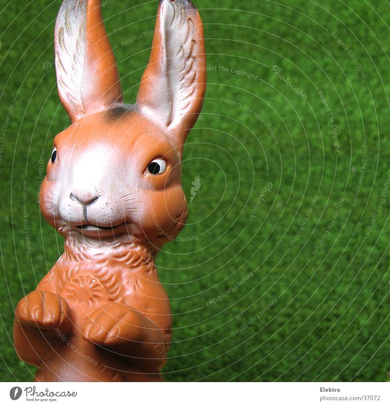 Osterhase Puppe Hase & Kaninchen Ostern Gummi Kunstrasen Angsthase Eigelb Spielzeug Ohr Freude Frühling lange ohren hasenschwanz wie aus dem ei gepellt rammler