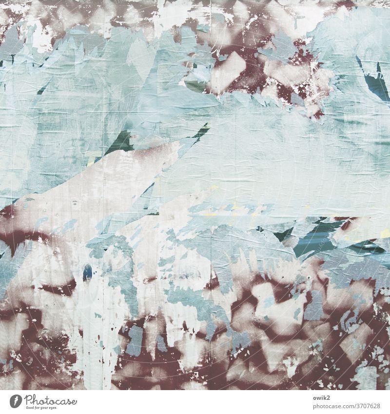 Ausverkauf Plakatwand Verfall trashig Strukturen & Formen Papier Detailaufnahme Werbung Außenaufnahme kaputt Vergänglichkeit mehrfarbig Muster Farbfoto Rest