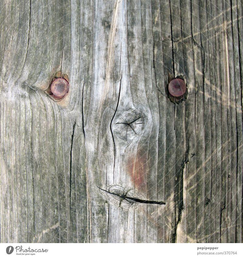 :-) Stadt Baum Wald Gesicht grau Holz außergewöhnlich Kunst braun Park Zeichen Kugel Kunstwerk Ornament androgyn
