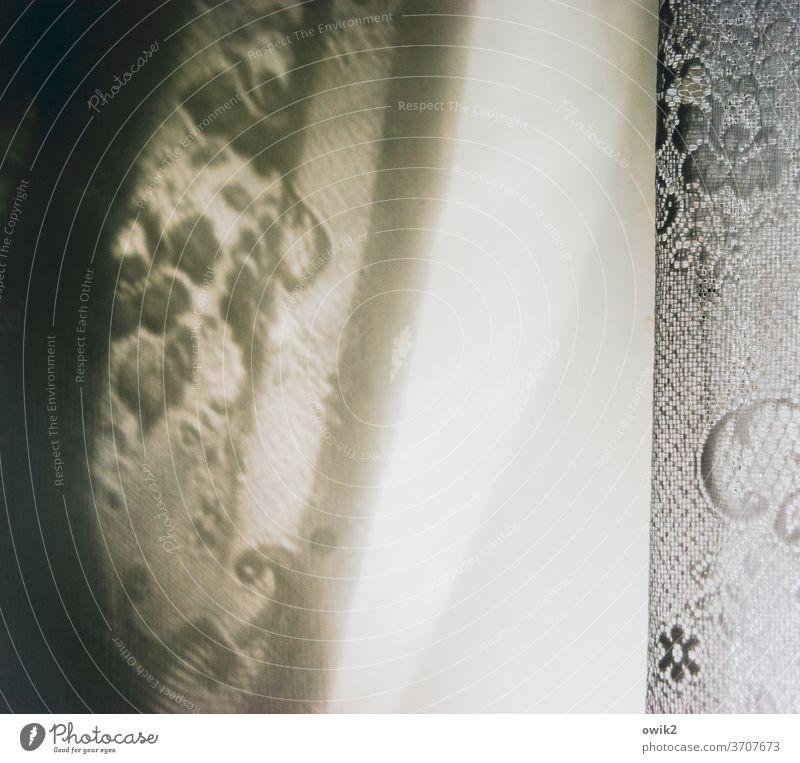 Leitmotiv Detailaufnahme schemenhaft Farbfoto Menschenleer Strukturen & Formen Textfreiraum unten Schutz diffus Andeutung Totale Fenster Nahaufnahme Milchglas