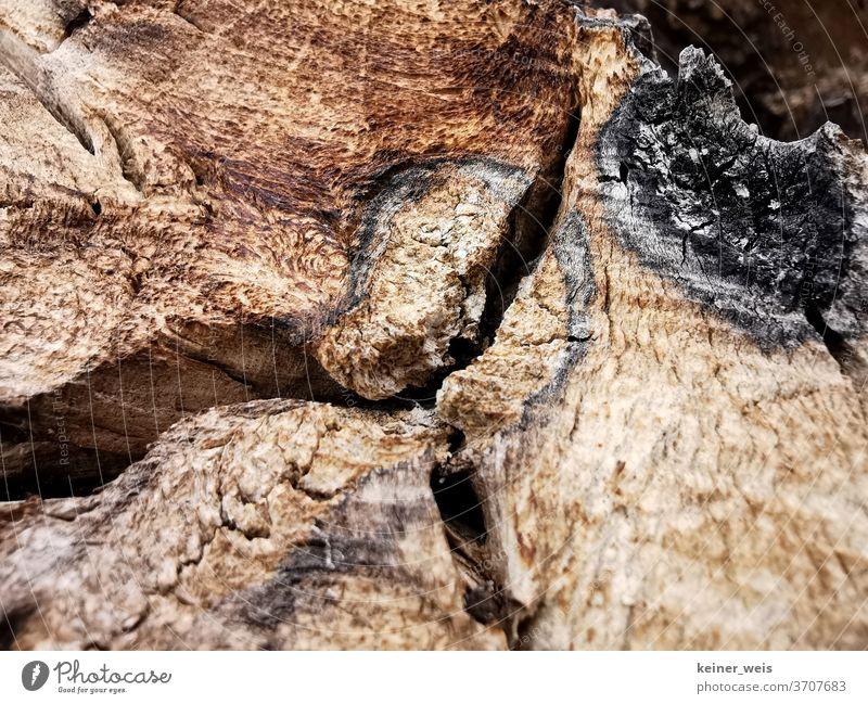 Nahaufnahme von Holz mit Sägespuren und Zeichen von Blitzschlag Holzpfahl Holzmaserung Maserung Spalt Farben braun schwarz geschnitten Baumstamm Spaltung