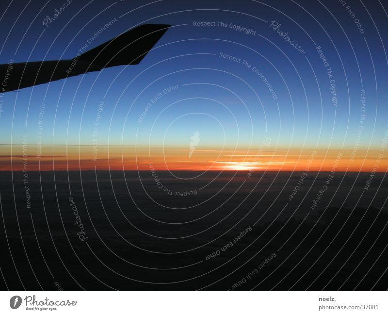 FLUG | SONNENUNTERGANG Himmel Sonne blau Wolken Flugzeug Luftverkehr Flügel Blauer Himmel Wolkendecke