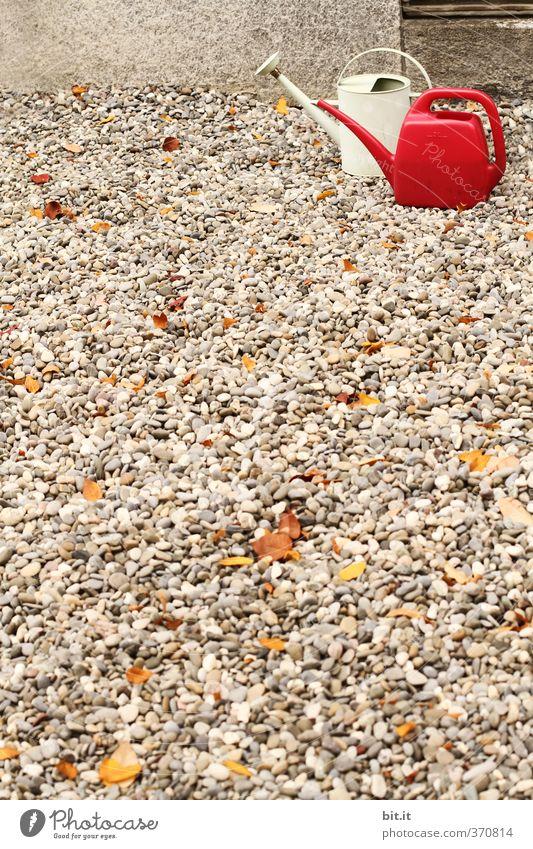 Schneeweisschen's und Rosenrot's kleine Hausarbeit Blume Stein Garten Freizeit & Hobby stehen Dekoration & Verzierung Bodenbelag Sauberkeit Kitsch trocken