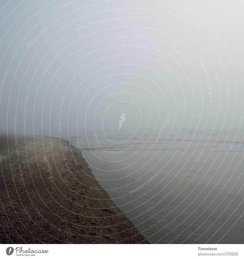 Nordsee. Ferien & Urlaub & Reisen Umwelt Natur Erde Wasser Himmel schlechtes Wetter Dänemark dunkel einfach braun grau Gefühle Strand ruhig Farbfoto