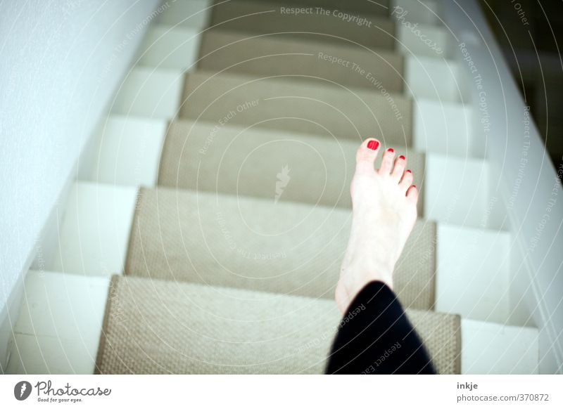 Vampire gehen zum Schlafen in den Keller Mensch Leben feminin oben Fuß Wohnung Treppe Häusliches Leben unten Barfuß abwärts bleich Teppich Nagellack Matten