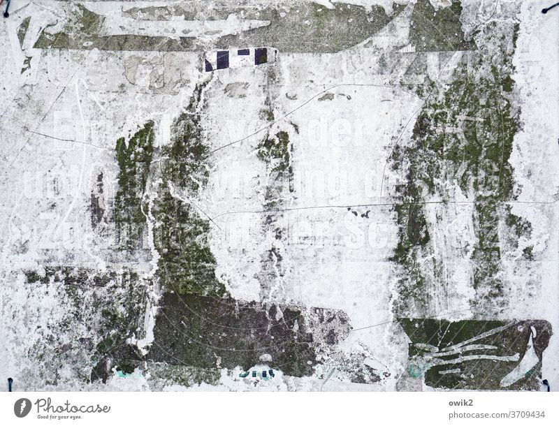 Zumutung Detailaufnahme Nahaufnahme Außenaufnahme Schwarzweißfoto trist kleben Kratzspur Etikett Zahn der Zeit trashig hässlich dreckig alt Rest Klebstoff