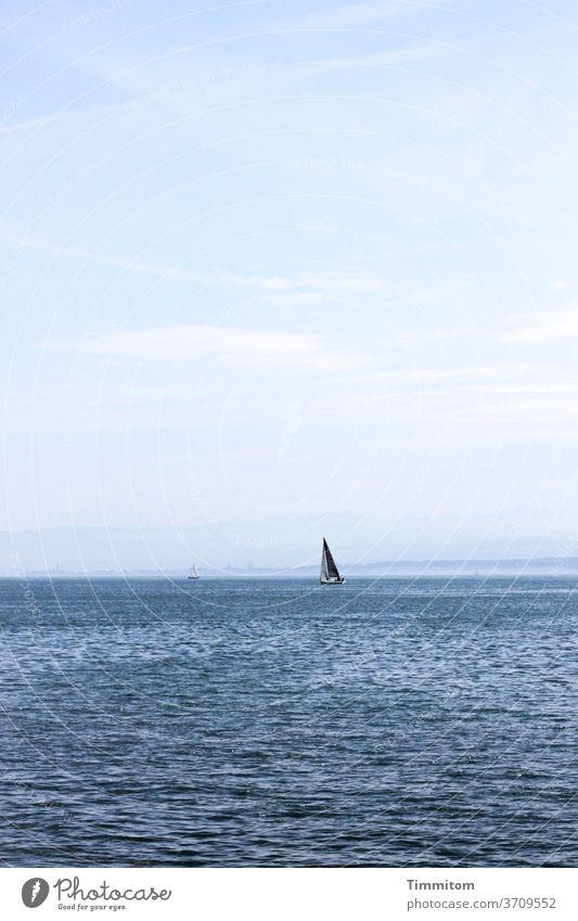 Weite und freie Fahrt Bodensee Wasser Boot Segel Segelboot Wellen Segeln Himmel Ferien & Urlaub & Reisen Horizont Tag Farbfoto Wind
