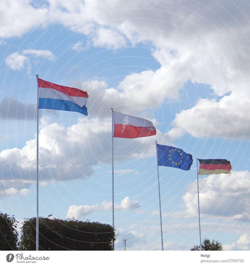 Multi-Kulti - Flaggen verschiedener Nationen wehen vor blauem Himmel mit Wolken Fahne Nationalflagge Europa Europaflagge Deutschland Deutschlandflagge