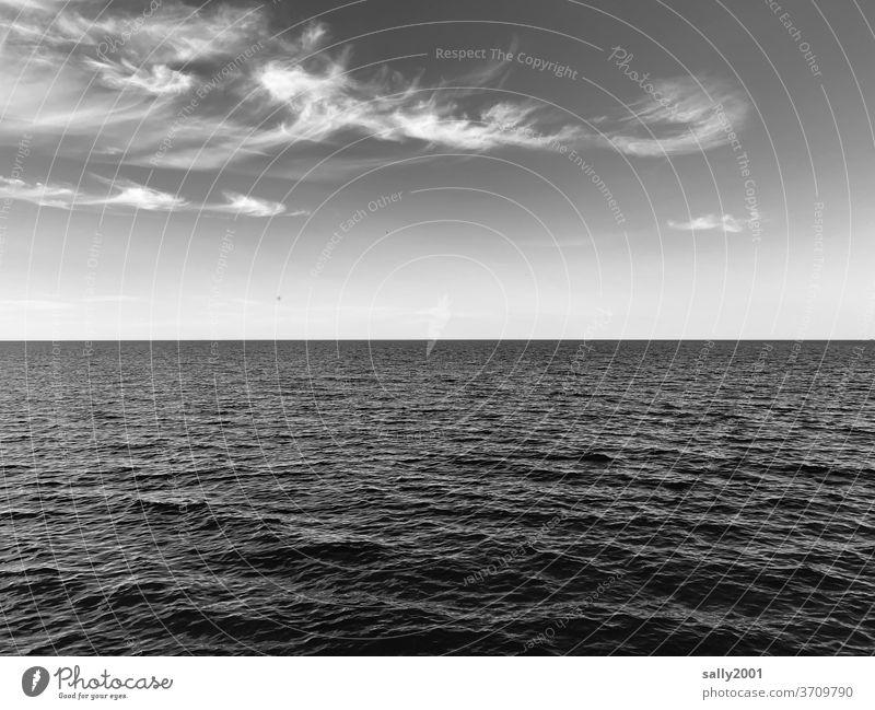 Vorfreude auf Meer... Ostsee Wölkchen Wasser Wellen Wellengang Horizont Menschenleer Himmel Außenaufnahme Ferne Ferien & Urlaub & Reisen Erholung Ruhe Stille