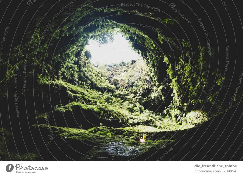 Vulkanhöhle Höhle Wasser Stein Berge u. Gebirge dunkel grün gras himmel blick göttlich erleuchtung Himmel Felsen Natur Landschaft Erde Gras Tag Pflanze Umwelt