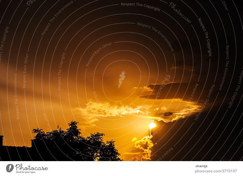 Sonnenuntergang im Dorf Dämmerung Baum Dach Silhouette Himmel Abend Wolken orange schwarz Sonnenstrahlen gelb Trauer Hoffnung Religion & Glaube