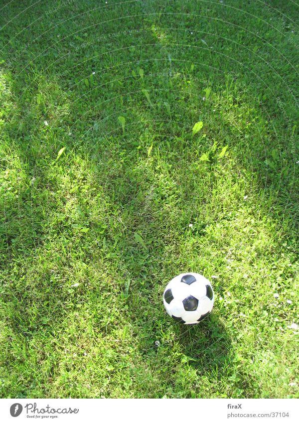 Wiese mit Fußball Gras grün schwarz Sport Ball Weis Schatten