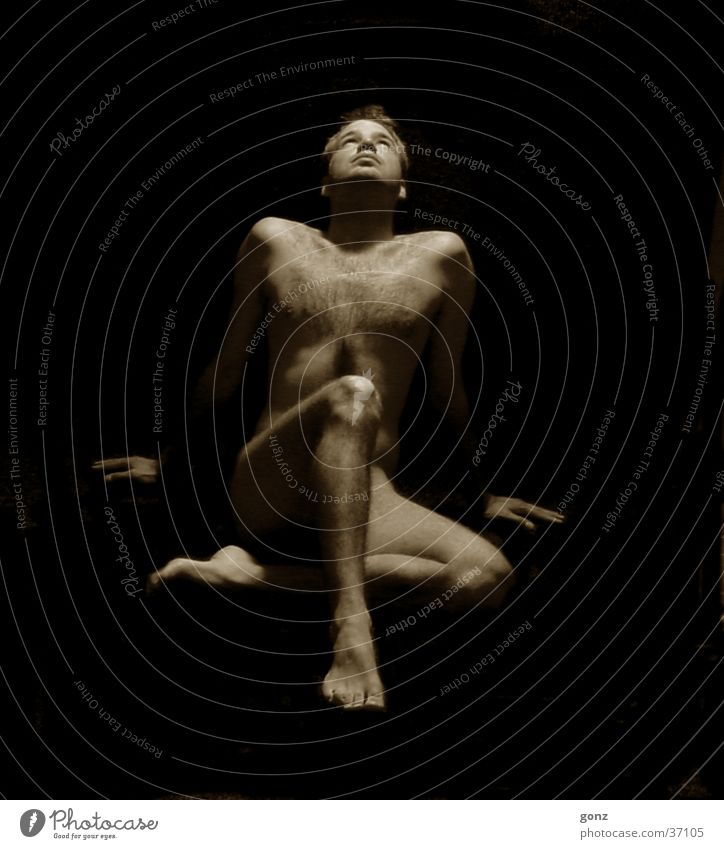 Sonne Nacht maskulin Porträt Mann Schatten Akt Sepia Weiblicher Akt