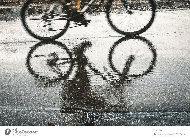 Fahrradfahrer schemenhaft als Spiegelbild auf dem Asphalt bei Regen Fahrradfahren Straße Verkehr Außenaufnahme Wege & Pfade Straßenverkehr Mobilität Bewegung