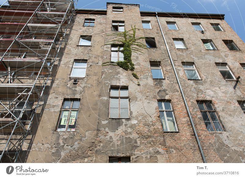 Hinterhof Berlin Prenzlauer Berg Stadt Stadtzentrum Hauptstadt Altstadt Außenaufnahme Menschenleer Haus Tag Altbau Fenster Bauwerk Gebäude Fassade Architektur