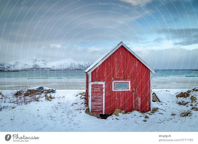 Rote Hütte am Strand auf den Lofoten Scheune Schnee Winter Meer Norwegen Skandinavien Holzhütte Berge u. Gebirge Horizont Ferien & Urlaub & Reisen Küste kalt
