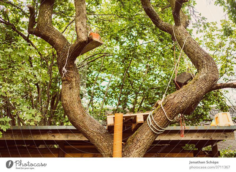 Baumhaus in Garten mit Rohr DIY Kindertraum Palette Pflanze Zuhause grün klettern outdoor selbstgebaut wald Natur Außenaufnahme Holz