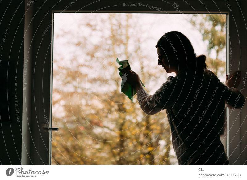 fenster putzen Fenster Frau Haushalt Reinigen zuhause Sauberkeit sauber Wohnung Häusliches Leben Haushaltsführung Fensterscheibe Fenster putzen Reinlichkeit