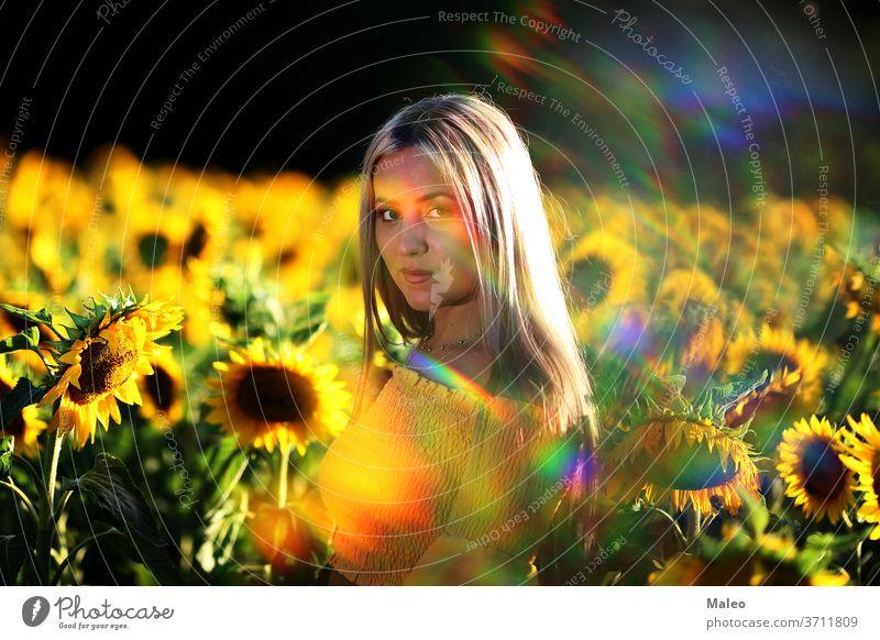 Porträt eines jungen Mädchens in einem Sonnenblumenfeld allein schön Schönheit Überstrahlung Kaukasier Sauberkeit Farbe Land Landschaft niedlich Kleid Feld