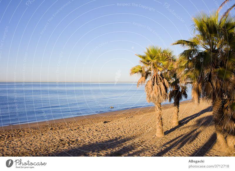 Strand von Marbella an der Costa del Sol in Spanien costa Entf Andalusia Andalusien sandig Küste Küstenlinie Meeresufer MEER mediterran Seeküste Küstenstreifen