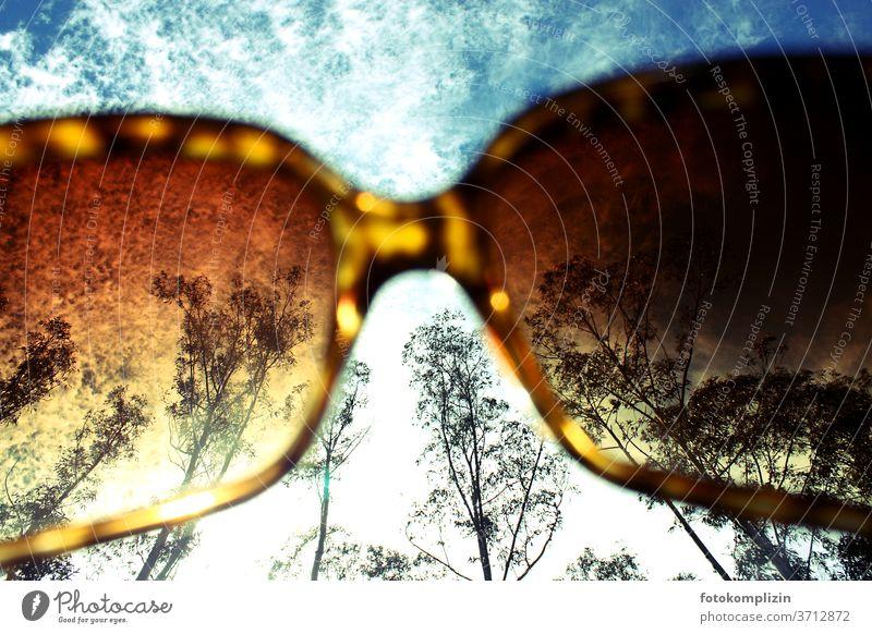 Himmel, Wolken und Bäume durch eine Sonnenbrille verfärbt gefärbt wolken blick von unten Brille Ferien & Urlaub & Reisen Sommergefühl Freizeit & Hobby Erholung