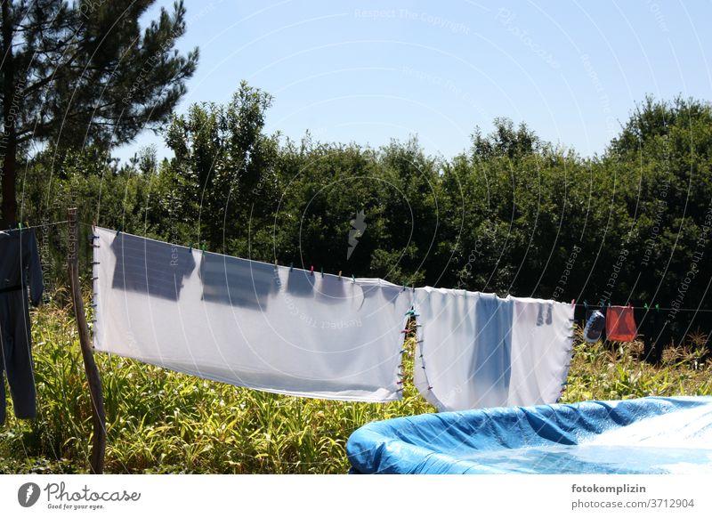 Wäscheleine mit transparenter Wäsche an einem Maisfeld Wäsche waschen Haushaltsführung trocknen aufhängen Sauberkeit Häusliches Leben Waschtag Bekleidung