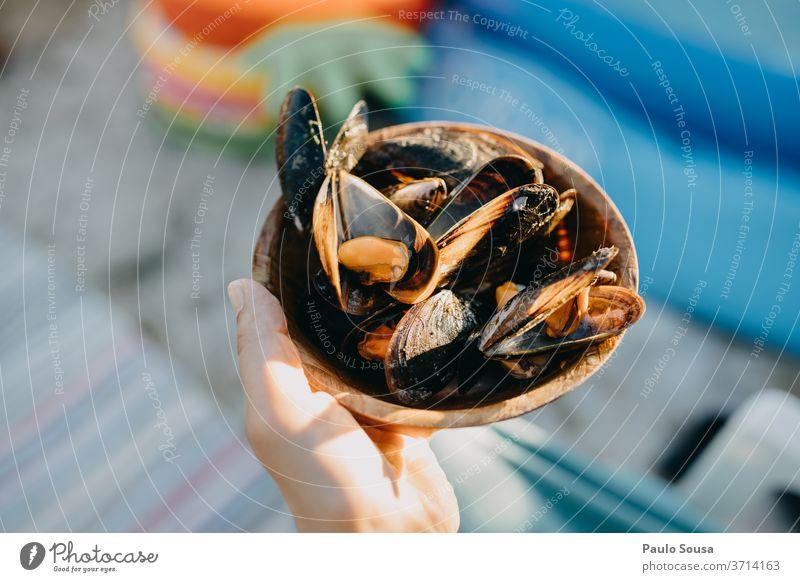 Nahaufnahme Schüssel mit Muscheln Miesmuschel Muschelschale Lebensmittel Schalen & Schüsseln Detailaufnahme Meer Schneckenhaus Außenaufnahme Farbfoto Tag Strand
