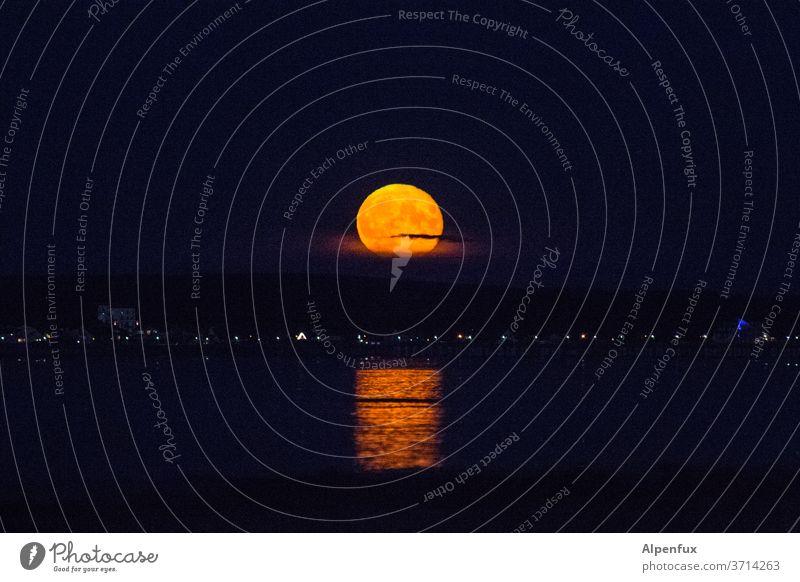 Bad Moon Rising Vollmond Nacht Himmel Mond vollmondschein Mondschein Licht Nachthimmel dunkel Lichterscheinung Außenaufnahme Menschenleer Werwolf Kontrast