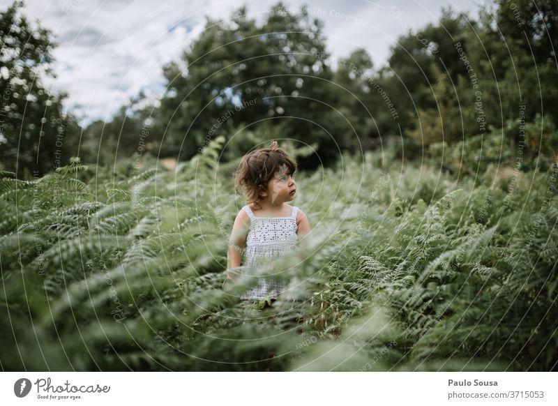 Süßes Kind Mädchen steht in einem Farnfeld Wurmfarn Farnblatt Grünpflanze Farbfoto Blatt Botanik Umwelt Wachstum Natur Pflanze grün Menschenleer Außenaufnahme