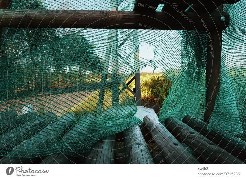Durchgepustet Gestell unklar Straße Außenaufnahme draußen Natur Landschaft Strommast Metall Balken Holz Plane Bauplane fadenscheinig durchlöchert Bäume Acker